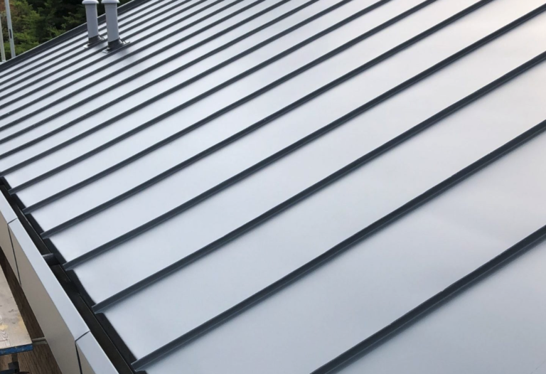 Showcasing a stainless steel roof